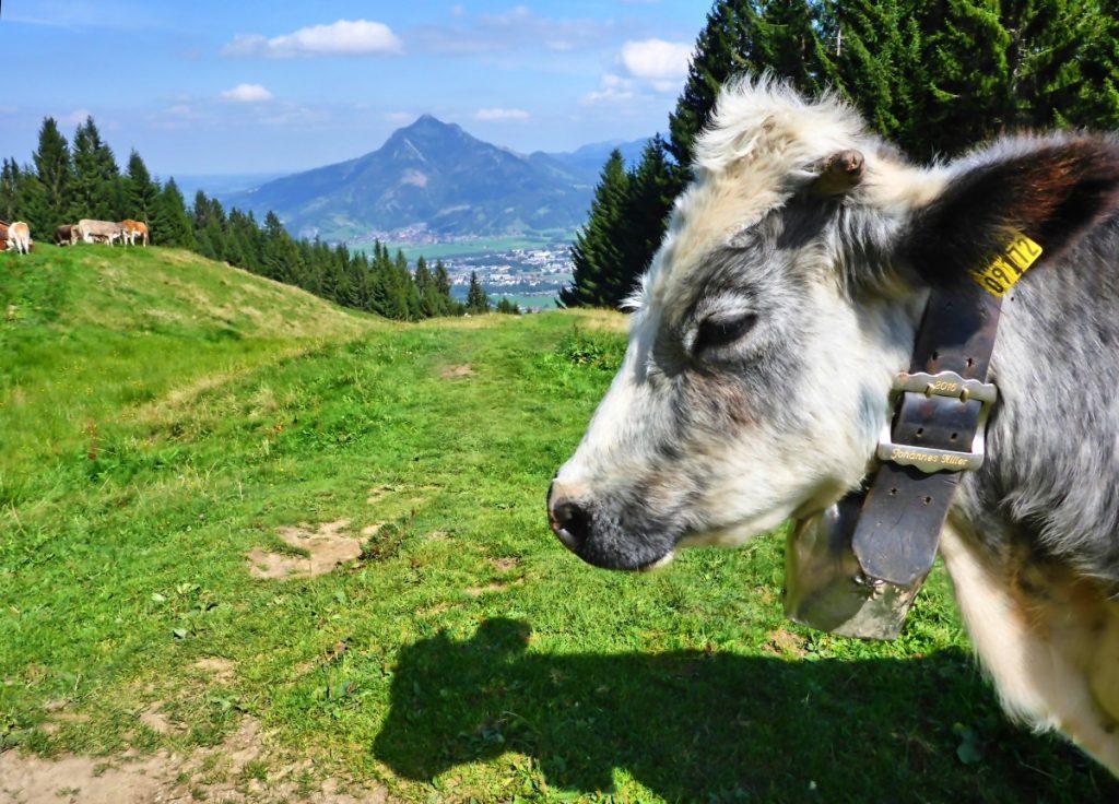 Wandern um Obermaiselstein